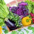 お肉で巻いて美味しい野菜や映える野菜は⁇