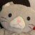 chika_no_gohan さんのプロフィール写真